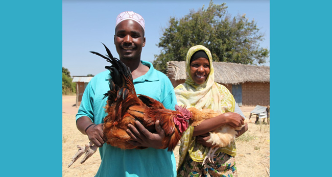 Man and woman with chickens