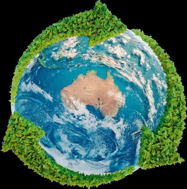 CCARRN Globe
