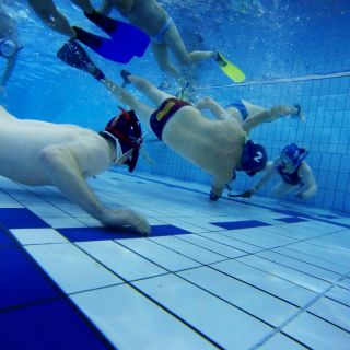 A group of people playing underwater hockey, chasing the puck at the bottom of a swimming pool.