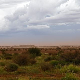 A scene of an Australian desert with a storm rolling in