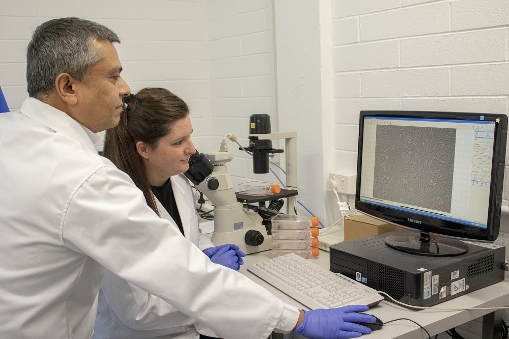 Dr Tariq Ezaz and Julie Strand are working on a project to develop cell lines for biobanking.