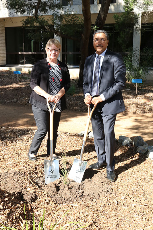 Professor Deep Saini and Aunty Roslyn Brown planted a tea tree