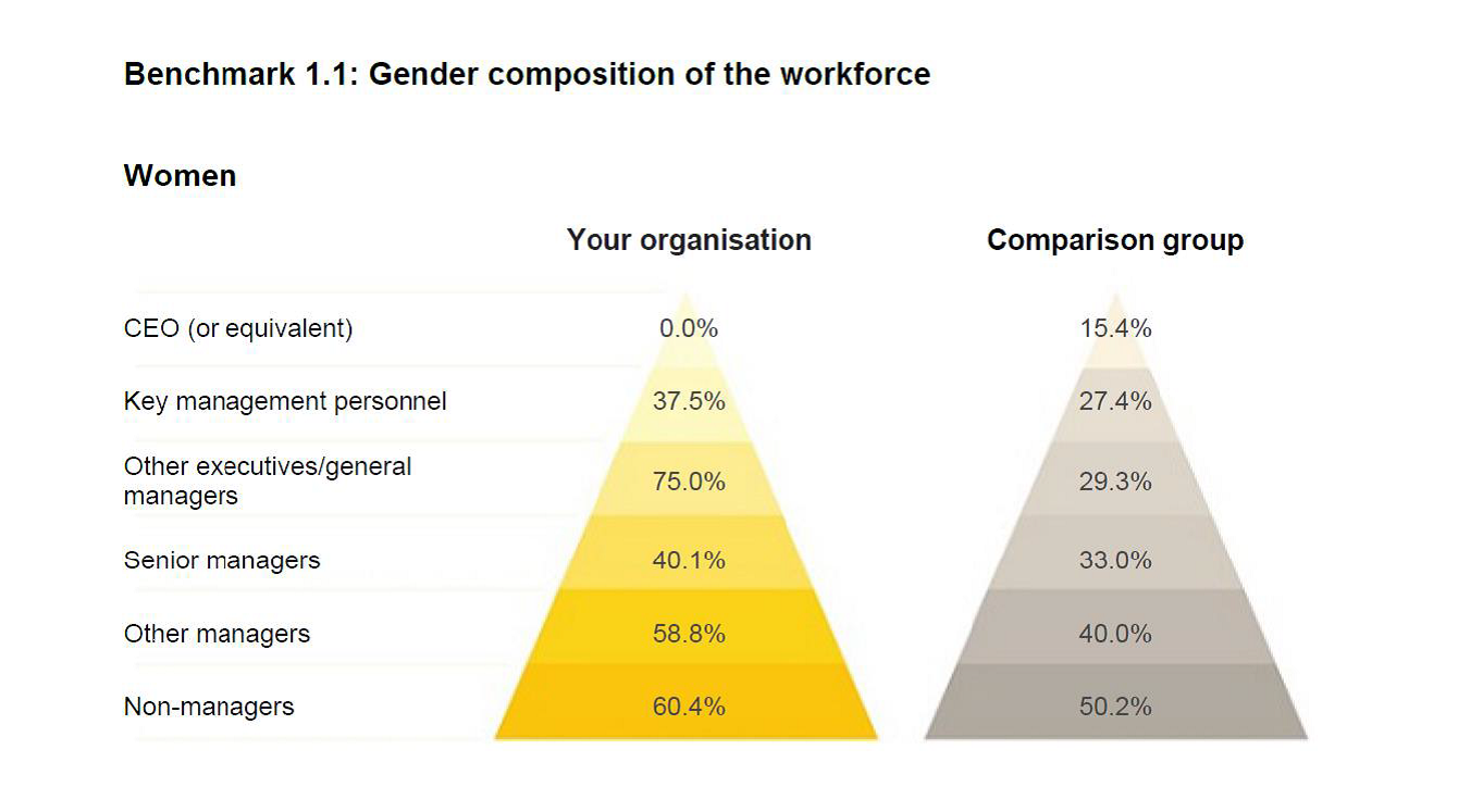 Gender composition of the workforce graph