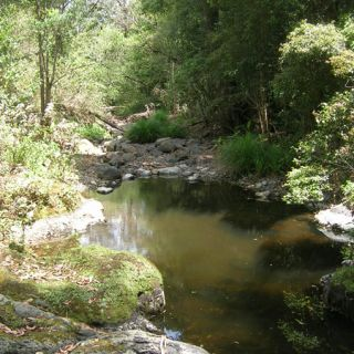 Headwater stream pool at Gap Creek