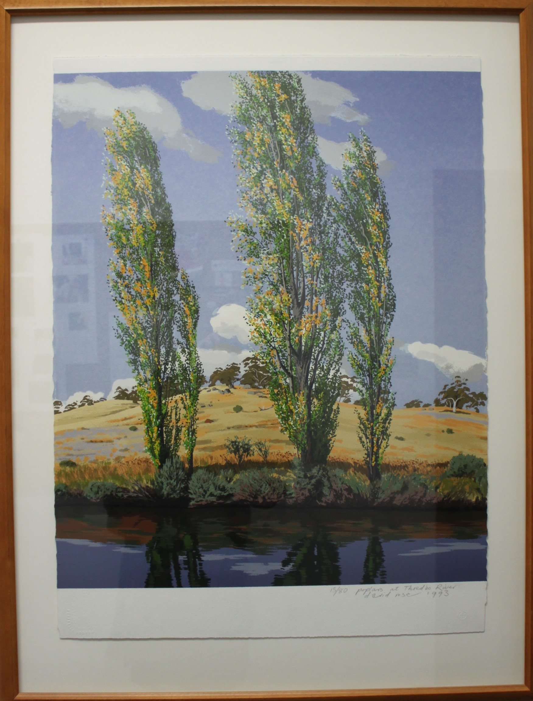 Poplar Trees by Thredbo River by David Rose