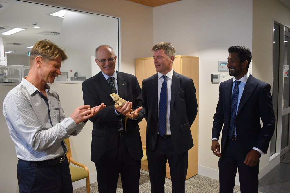 representatives with bearded dragon