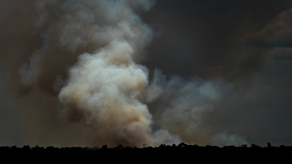 Smoke billows up from a wildfire burning within the Amazon Rainforest