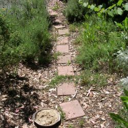 Paths threaded through the gardens for children to discover