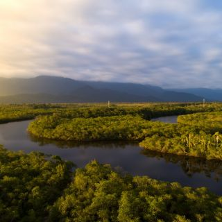 An elevated photo of sunrise over the Amazon with the river and several stream visible in the early light