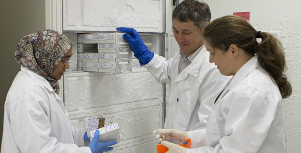 Three scientists remove samples from a freezer