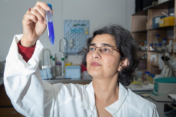 UC Associate Professor Reena Ghildyal at work in her lab