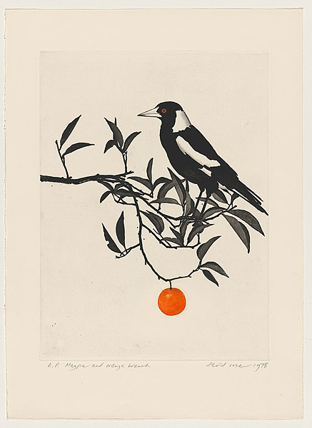 Magpie and the Orange Branch by David Rose