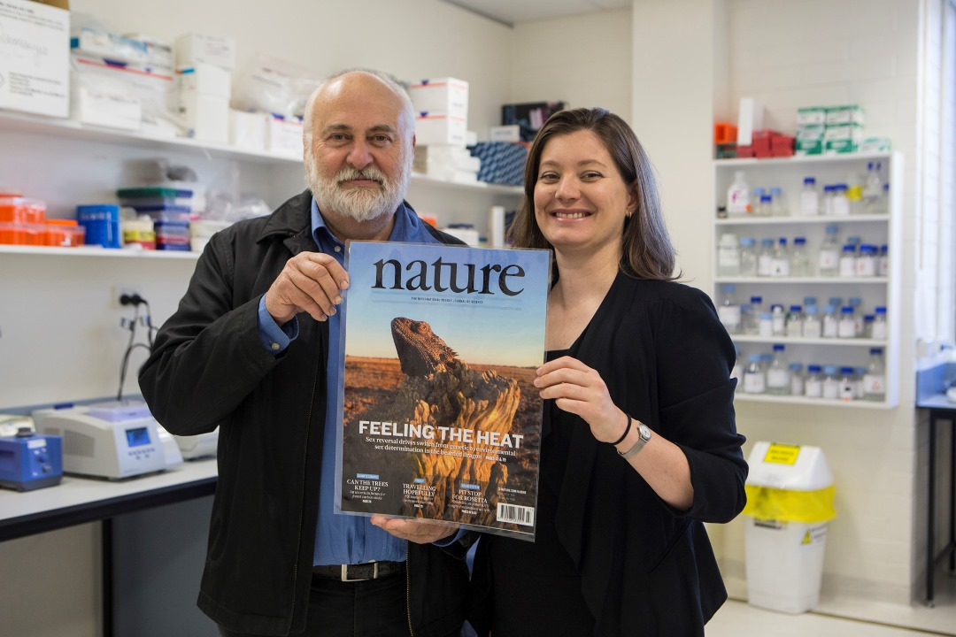 Researchers Distinguished Professor Arthur Georges and Dr Clare Holleley with the cover of Nature.