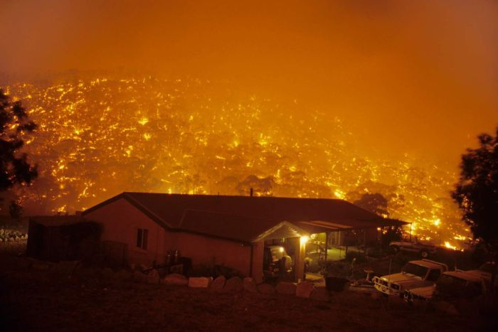 Forests near Canberra on fire 2003